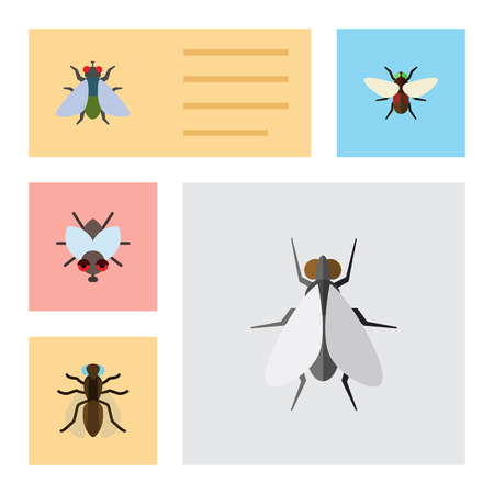 Flat Icon Housefly Set Of Fly, Bluebottle, Mosquito And Other Vector Objects. Also Includes Dung, Gnat, Mosquito Elements.