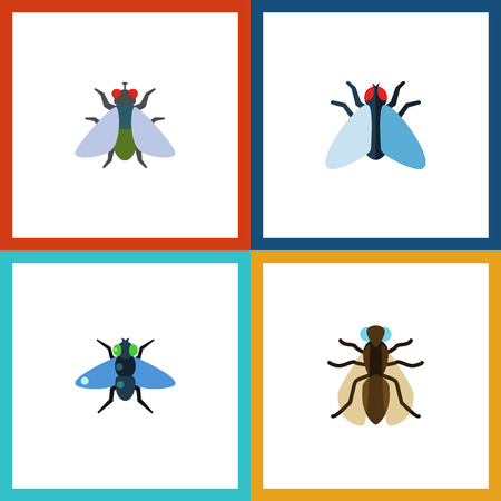 Flat Icon Buzz Set Of Dung, Fly, Housefly And Other Vector Objects. Also Includes Gnat, Dung, Insect Elements.