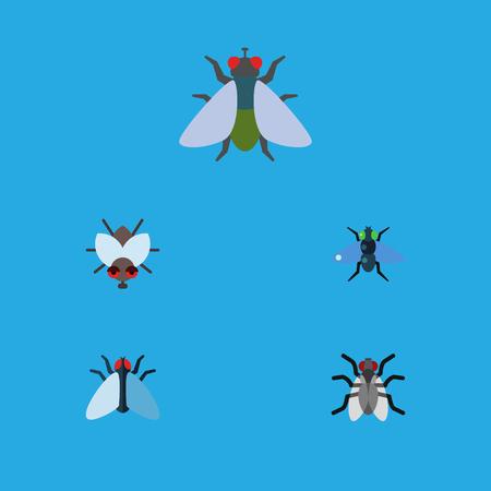 Flat Icon Fly Zestaw Fly, Housefly, Gnat i innych obiektów wektorowych. Obejmuje również muchę domową, komara, owady.