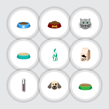 Flat Icon Animal Set Of Seaweed, Feeding, Rabbit Meal And Other Vector Objects. Also Includes Nutrient, Fish, Bowl Elements.