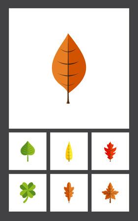 Platte pictogram gebladerte set leafage, gebladerte, Linden en andere vectorobjecten. Omvat ook Linden, Leaf, Leafage Elements.