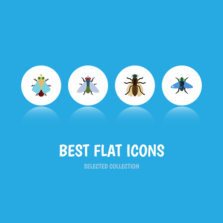Flat Icon Buzz Set Of Mosquito, Fly, Dung And Other Vector Objects. Also Includes Mosquito, Bluebottle, Housefly Elements.
