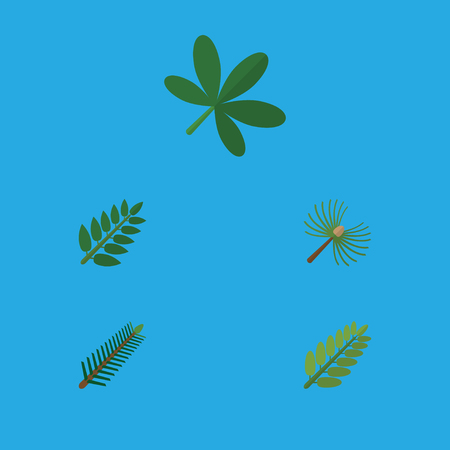 Flat Icon Natural Set Of Leaves, Rosemary, Maple And Other Vector Objects