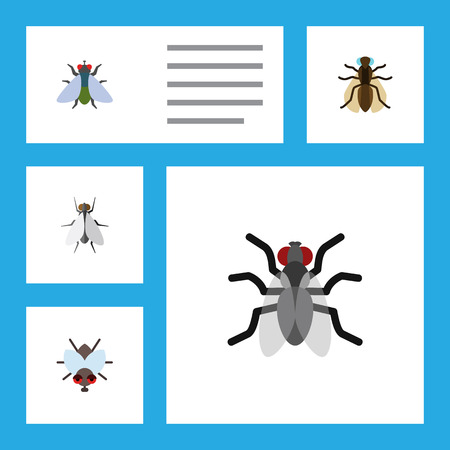 Flat Icon Fly Set Of Fly, Mosquito, Gnat And Other Vector Objects. Also Includes Mosquito, Hum, Gnat Elements.