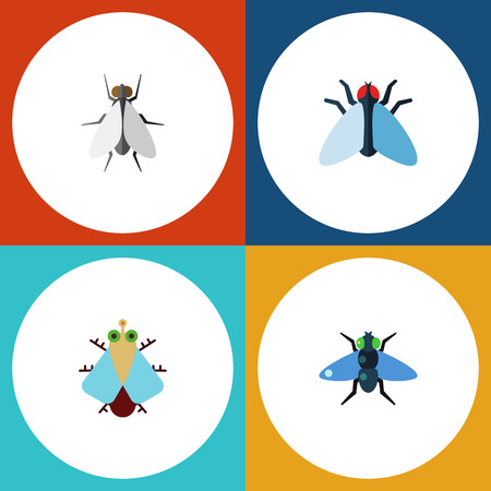 Flat Icon Fly Set Of Tiny, Hum, Dung And Other Vector Objects. Also Includes Housefly, Dung, Bluebottle Elements. Illustration