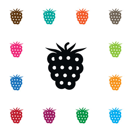 Isolated Blackberry Icon. Freshness Vector Element Can Be Used For Bramble, Blackberry, Dewberry Design Concept.