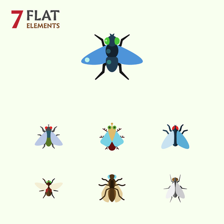 Flat Icon Housefly Set Of Housefly, Mosquito, Dung And Other Vector Objects. Also Includes Bluebottle, Dung, Housefly Elements.