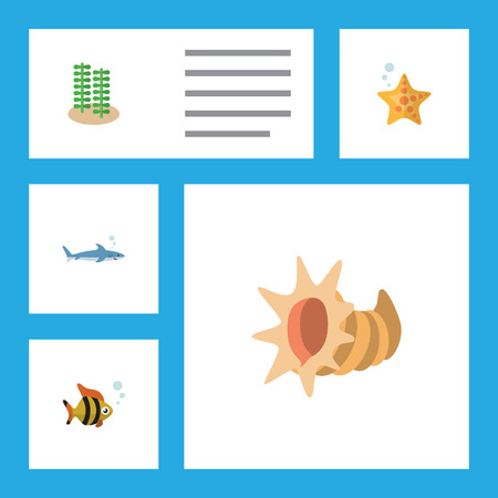 Flat Icon Sea Set Of Shark, Seashell, Seaweed And Other Vector Objects. Also Includes Seaweed, Sea, Gray Elements.