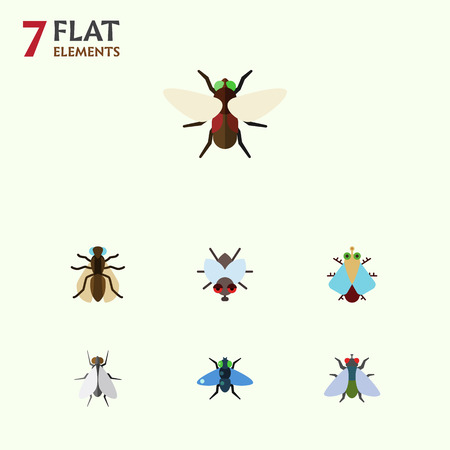 Flat Icon Fly Set Of Buzz, Tiny, Hum And Other Vector Objects. Also Includes Gnat, Tiny, Dung Elements. Stock Photo