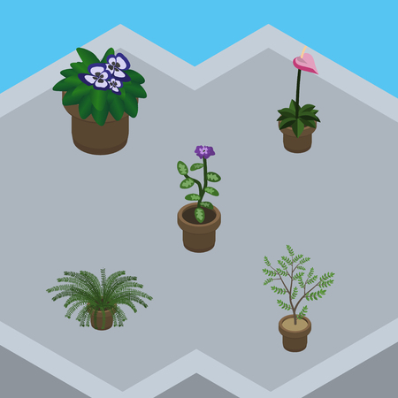 Isometric Plant Set Of Plant, Fern, Flower And Other Vector Objects Illustration