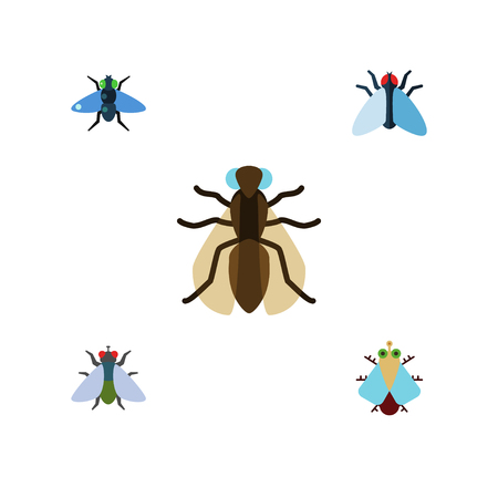 Flat Icon Buzz Set Of Housefly, Fly, Mosquito And Other Vector Objects