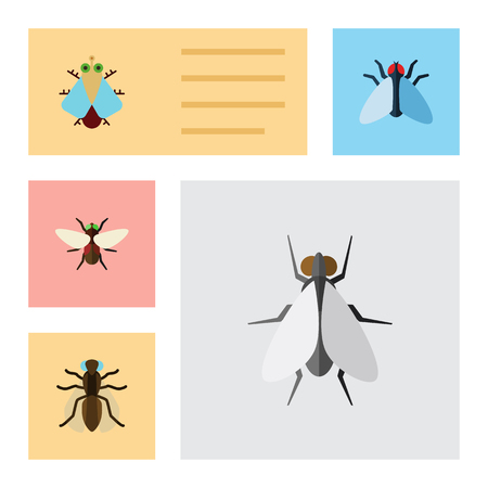 Flat Icon Fly Set Of Housefly, Tiny, Mosquito And Other Vector Objects. Also Includes Mosquito, Housefly, Tiny Elements. Illustration