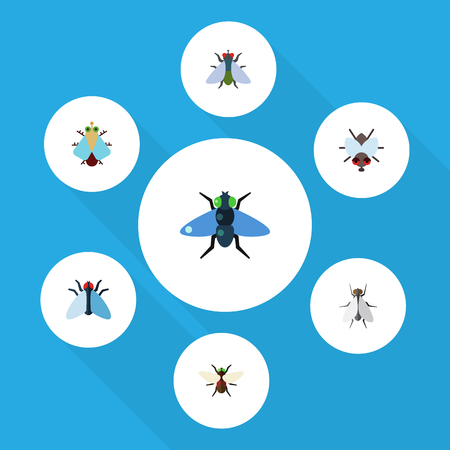 Flat Icon Housefly Set Of Dung, Fly, Bluebottle And Other Vector Objects. Also Includes Insect, Hum, Tiny Elements.