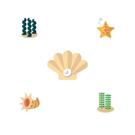 Flat Icon Sea Set Of Seaweed, Conch, Alga And Other Vector Objects. Also Includes Starfish, Seashell, Alga Elements.