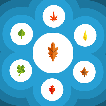 Flat Icon Leaves Set Of Hickory, Leafage, Linden And Other Vector Objects. Also Includes Leafage, Oaken, Hickory Elements.