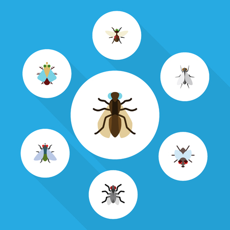 Flat Icon Buzz Set Of Buzz, Hum, Tiny And Other Vector Objects. Also Includes Mosquito, Dung, Bluebottle Elements.