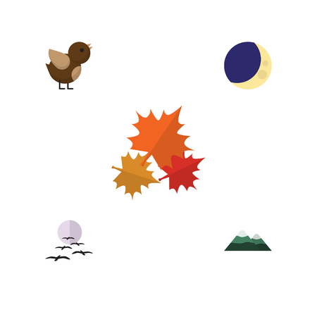 Flat Icon Natural Set Of Bird, Peak, Canadian And Other Vector Objects. Also Includes Midnight, Mountain, Pinnacle Elements. Illustration