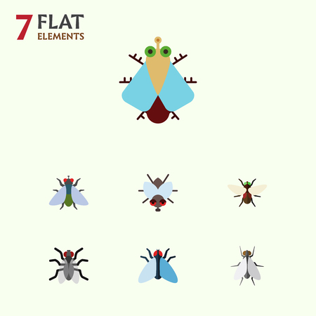 Flat Icon Housefly Set Of Housefly, Gnat, Bluebottle And Other Vector Objects. Also Includes Hum, Bluebottle, Insect Elements.