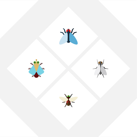 Flat Icon Housefly Set Of Bluebottle, Tiny, Housefly And Other Vector Objects. Also Includes Housefly, Bluebottle, Tiny Elements.