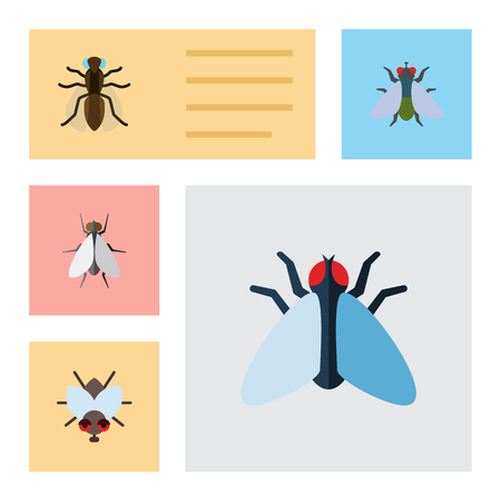 Flat Icon Buzz Set Of Buzz, Mosquito, Housefly And Other Vector Objects
