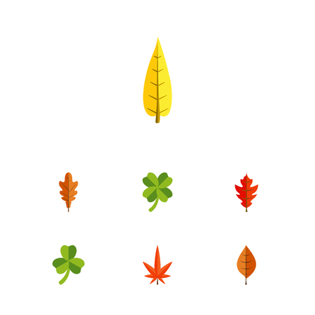 Flat Icon Leaves Set Of Maple, Foliage, Leaf And Other Vector Objects. Also Includes Linden, Alder, Foliage Elements.