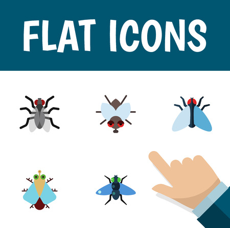 Flat Icon Fly Set Of Gnat, Housefly, Buzz And Other Vector Objects. Also Includes Housefly, Bluebottle, Dung Elements.