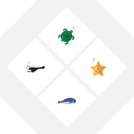 Flat Icon Marine Set Of Cachalot, Tortoise, Sea Star And Other Vector Objects. Also Includes Angler, Whale, Star Elements.