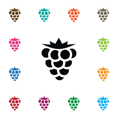 dewberry: Isolated Blackberry Icon. Bramble Vector Element Can Be Used For Bramble, Blackberry, Dewberry Design Concept.