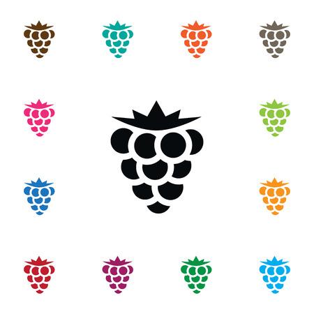 Isolated Blackberry Icon. Bramble Vector Element Can Be Used For Bramble, Blackberry, Dewberry Design Concept.