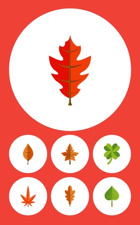 Flat Icon Leaf Set Leafage, Linden, Els en andere Vectorobjecten. Omvat ook Esp, Leafage, Linden Elements.