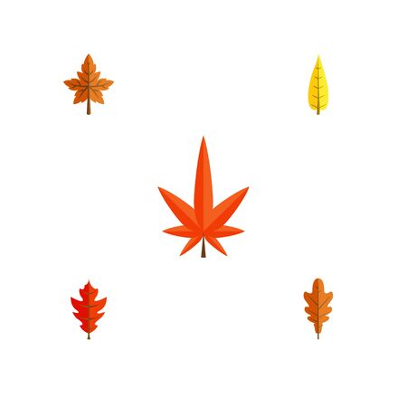 Flat Icon Foliage Set Of Aspen, Alder, Frond And Other Vector Objects. Also Includes Alder, Leaf, Oaken Elements.