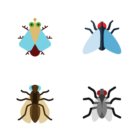 Flat Icon Housefly Set Of Tiny, Housefly, Gnat And Other Vector Objects