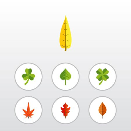 Flat Icon Leaves Set Of Aspen, Leaf, Frond And Other Vector Objects Illustration
