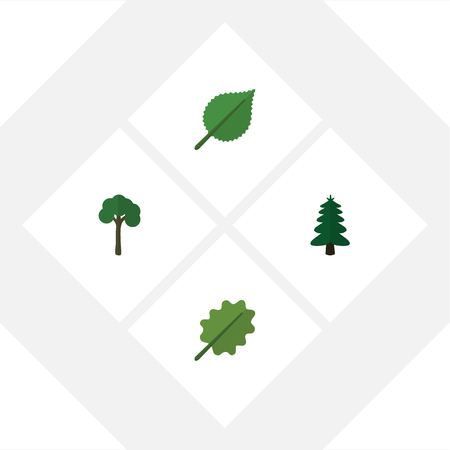 Flat icon ecology set of alder, evergreen, linden and other vector objects. Also includes alder, spruce, oak elements. Çizim