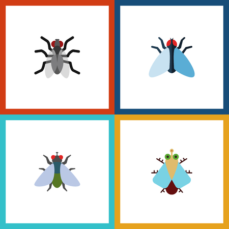 Flat Icon Housefly Set Of Fly, Gnat, Tiny And Other Vector Objects. Also Includes Insect, Hum, Gnat Elements.