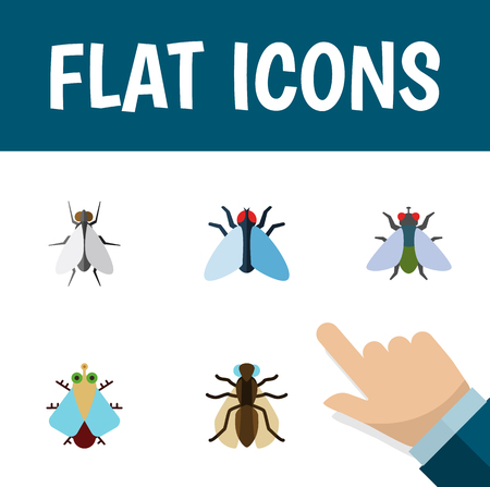 Flat Icon Housefly Set Of Fly, Tiny, Housefly And Other Vector Objects. Also Includes Fly, Housefly, Mosquito Elements. Illustration