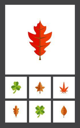 Platte pictogram bladeren Set van Linden, Aspen, gebladerte en andere vectorobjecten. Bevat ook Hickory, Foliage, Linden Elements.
