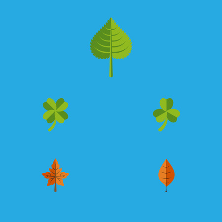 Flat Icon Maple Set Of Hickory, Leafage, Alder And Other Vector Objects. Also Includes Leafage, Alder, Aspen Elements.