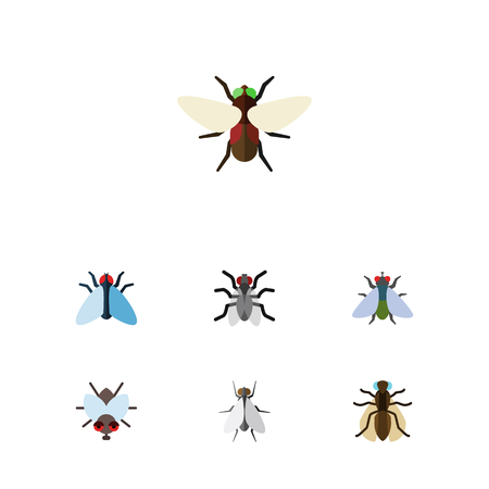 Icon flat fly set of bluebottle, buzz, mosquito and other vector objects. Also includes gnat, dung, housefly elements.