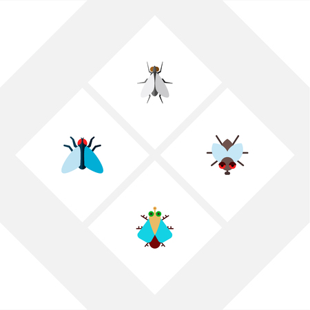Icon flat fly set of tiny, insect, fly and other  objects. Also includes fly, tiny, housefly elements.
