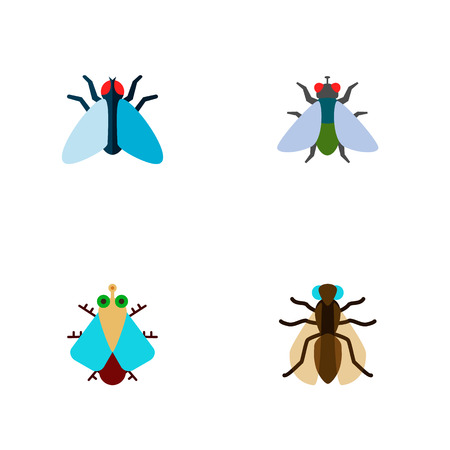 Icon flat fly set of buzz, gnat, housefly and other vector objects.