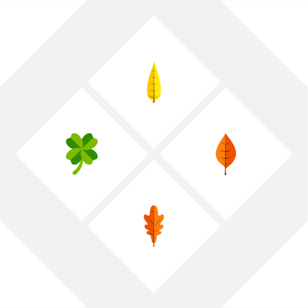 Icon flat leaf set of leaf, hickory, oaken and other vector objects. Also includes leaf, foliage, hickory elements. Illustration