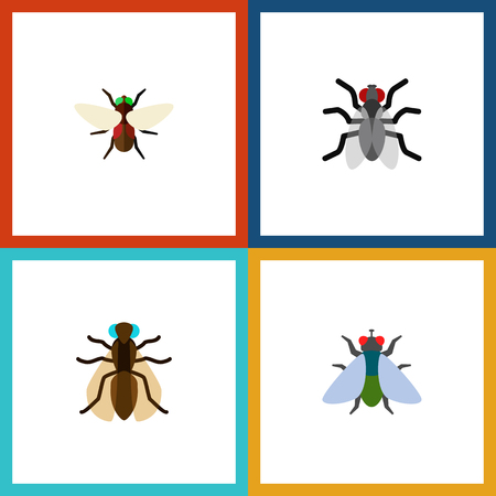 Icon flat fly set of mosquito, buzz, dung and other vector objects. Also includes fly, gnat, hum elements.