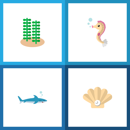Icon flat sea set of algae, gray fish, sea horse and other vector objects.