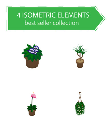 Isometric plant set of flower, herb, hanging and other vector objects. Also includes plant, flower, flowerpot elements.