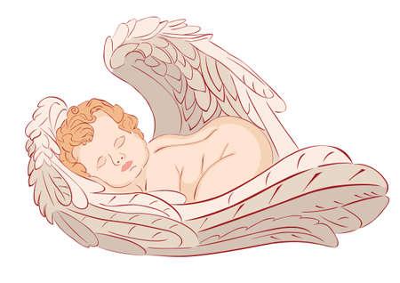 illustration of sleeping angel on white background  Vector