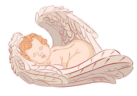 baby angel: illustration of sleeping angel on white background