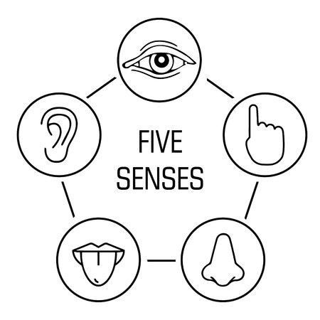 set van vijf menselijke zintuigen. Visie, gehoor, aanraking, smaak, geur pictogram Vector illustratie.