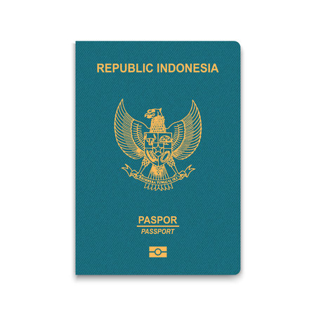 Passport of Indonesia. Vector illustration Çizim