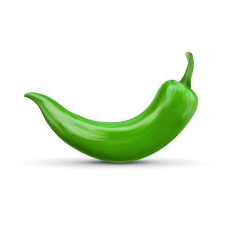 Realistic green hot natural chili pepper, isolated image with shadow vector illustration.